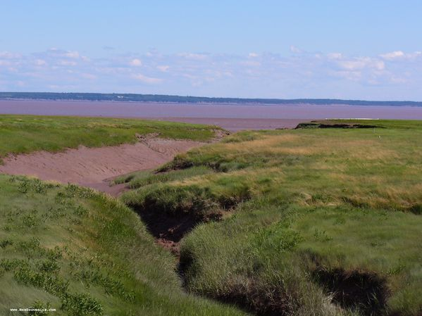 Baie de Fundy (Hopewell Cape)