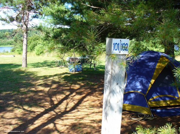 Camping Ponderosa Pines Campground à Hopewell Cape