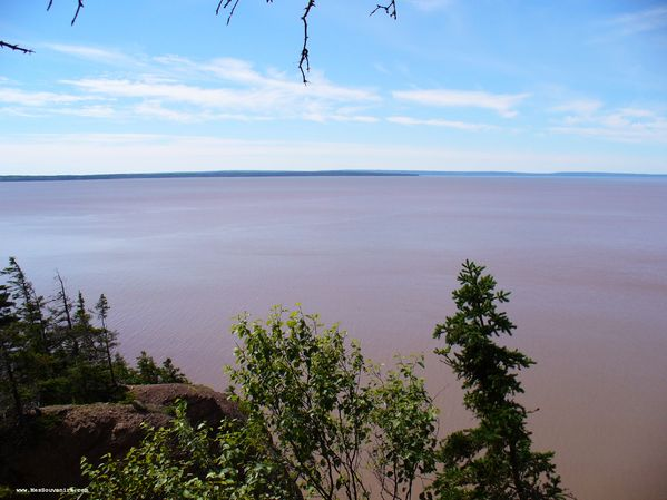 Baie de Fundy depuis Hopewell Rocks