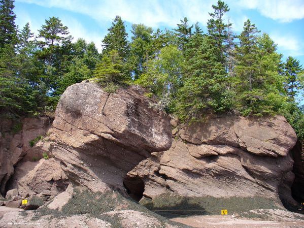 Le rocher E.T. (Hopewell Rocks)