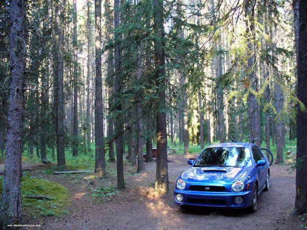 Camping Mont Protection - Parc National de Banff - Alberta