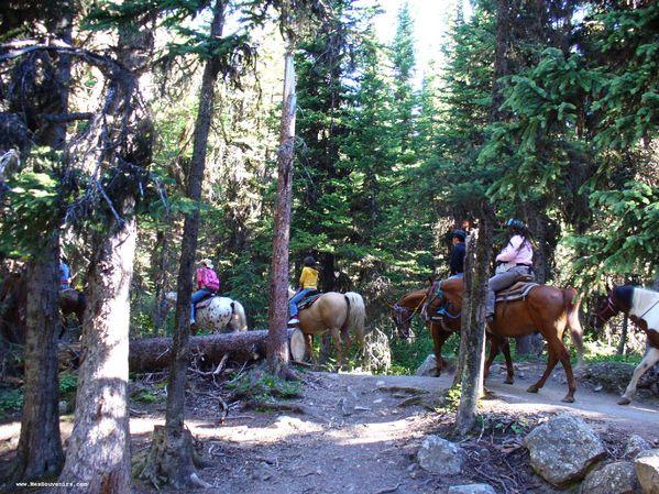 De l'équitation à lac Louise