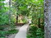 """Le petit sentier de bois du sentier """"La Chute"""" du parc national Forillon"""