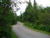 Une vue du camping depuis mon site